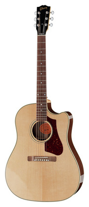 Дредноут Gibson HP 415 W AN