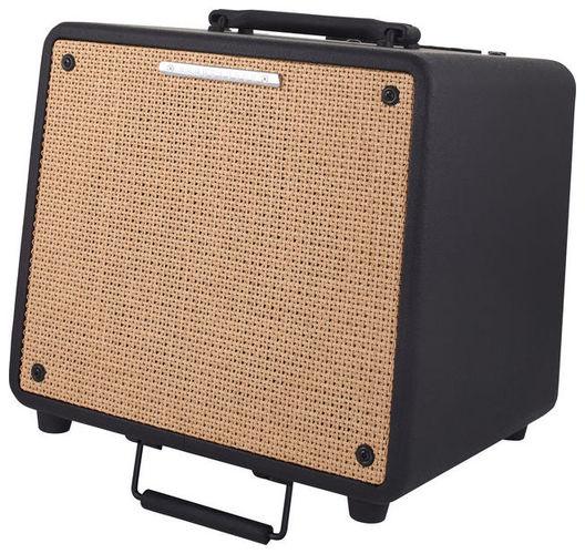 Усилитель для акустической гитар Ibanez T80N Troubadour усилитель для акустической гитар roland cube street ex