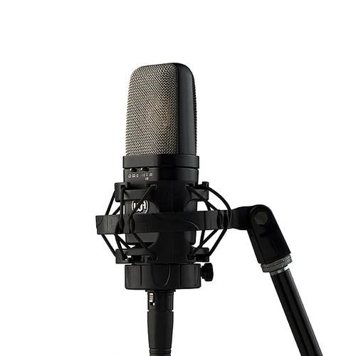 DJ оборудование Warm Audio WA-14 dj оборудование в россии недорого