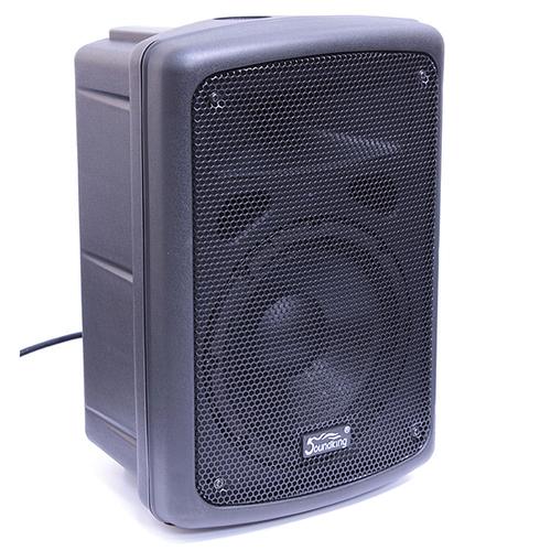 Активная акустическая система Soundking FP208-1A soundking h18s
